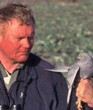 Reisleider - Arend Wassink - BirdingBreaks.jpg