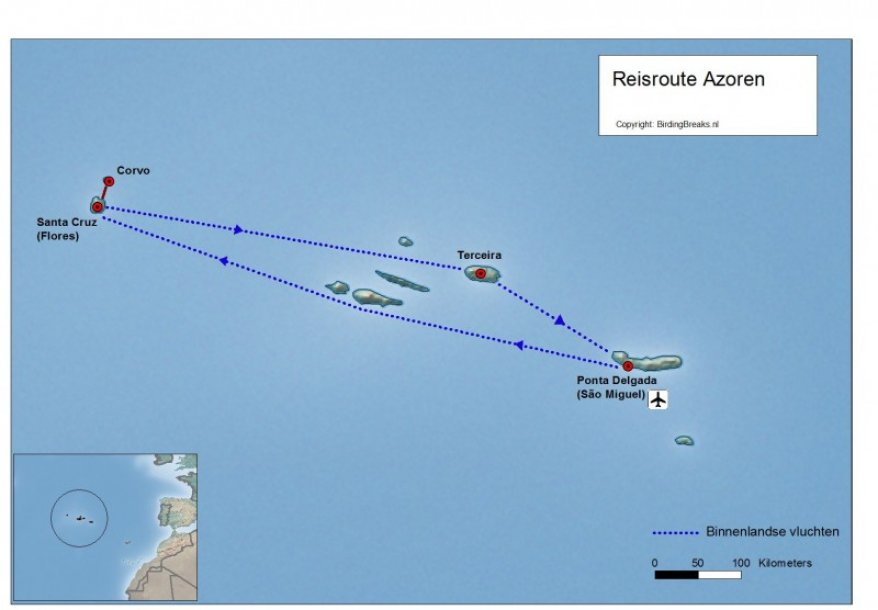 Routekaart Azoren vogelreis  - BirdingBreaks