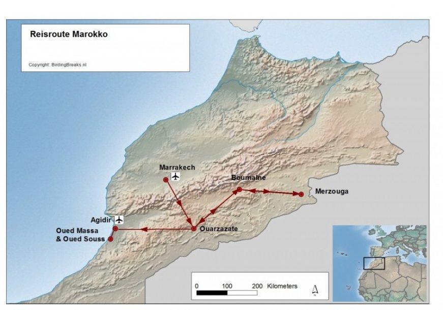 Routekaart Vogelreis Marokko - Easy Birding