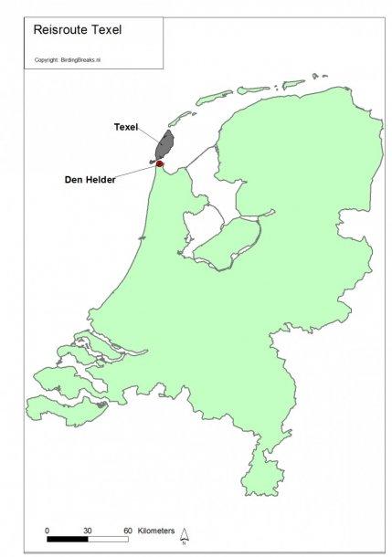 Routekaart vogelweekend Texel - Birdingbreaks