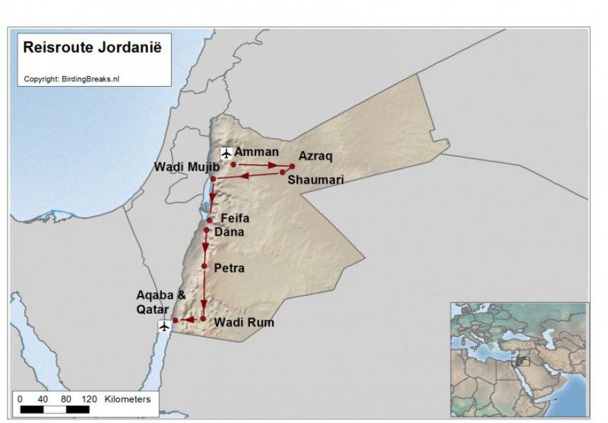 Routekaart Vogelreis Jordanië