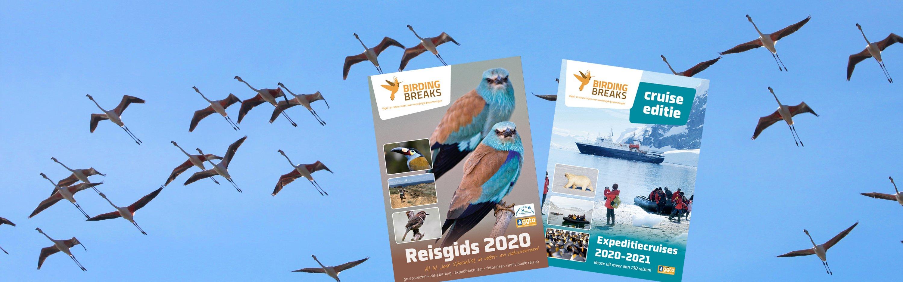 BirdingBreaks Reisgids 2020