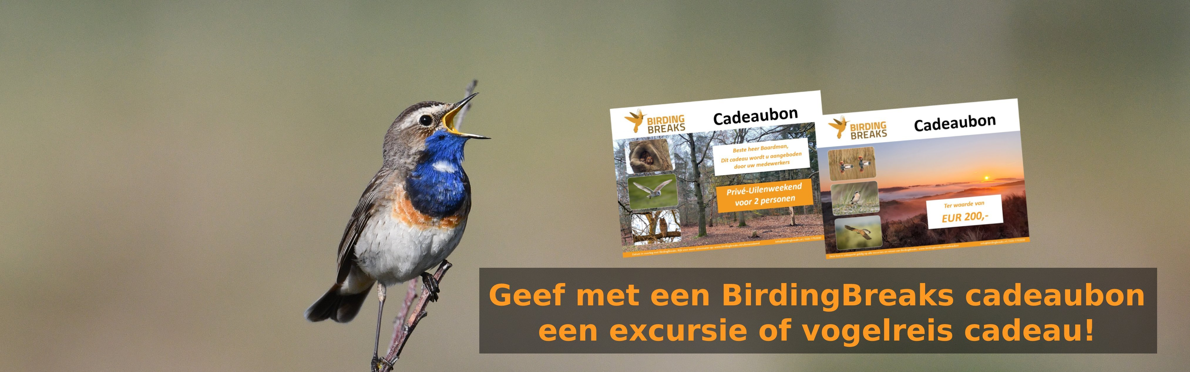 Cadeaubon BirdingBreaks