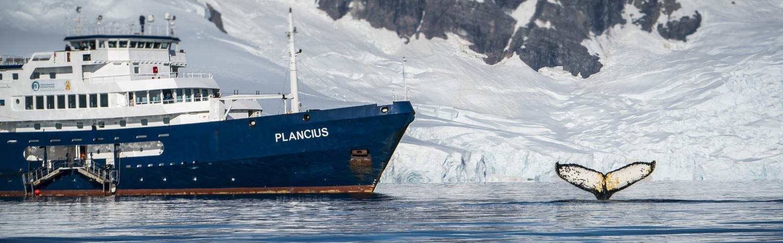 Expeditiecruise M/V Plancius